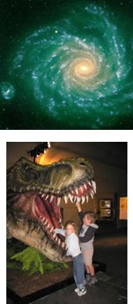 Galaxie - Dinosaure