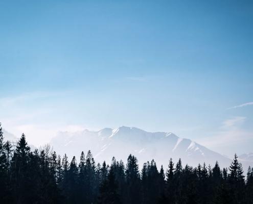 Ciel, montagne, forêt - Photo par Norbert Kundrak (unsplash.com)