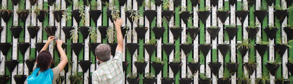 Deux personnes prennent soin de plantes - Photo par Daniel Funesfuentes (unsplash.com)