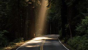 Lumière sur ma route de John Towner (unsplash.com)